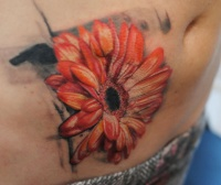 Cover up scars gerbera tattoo by dopeindulgence